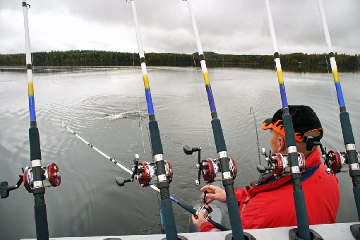 Lake Keurusselkä is famed for its big pike.