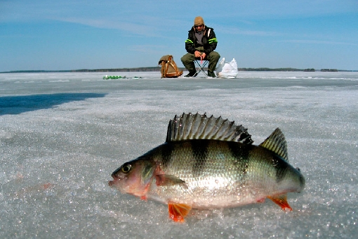 Late winter is the best ice-fishing season.