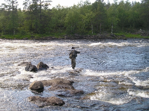 River Juutua is a splendid place for fly fishing.