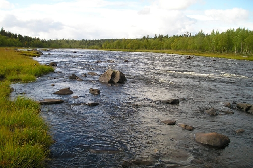 Typical scenery on the upper reaches of River Ivalojoki.