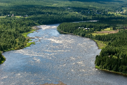 The Vuoennonkoski Rapids in the lower reaches of River Tornionjoki is an early-season hot spot.