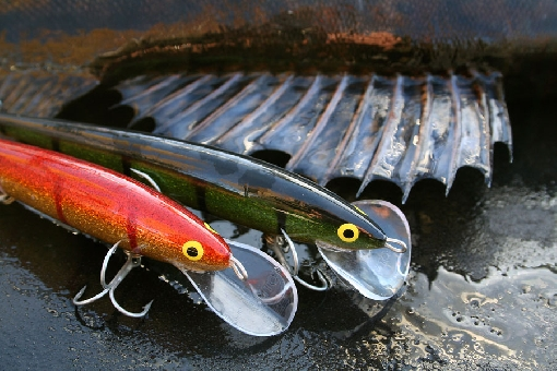 Plugs are the most popular zander lures for trolling.