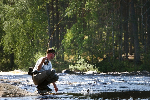 The Ruunaa Rapids is one of the most popular fishing grounds in Eastern Finland.