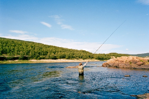 On River Teno, a fly-fishing enthusiast may catch the fish of his life.