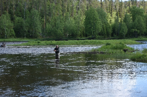 Fishing with dry fly on River Kuusinki.