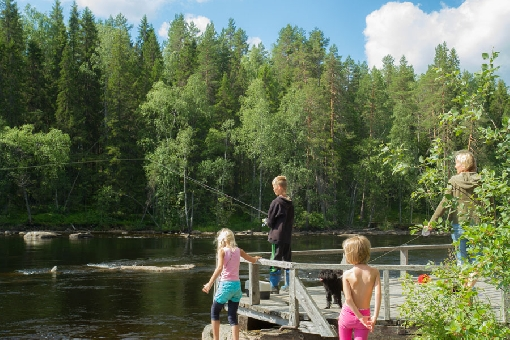 In Ruunaa there are fishing spots for whole family.